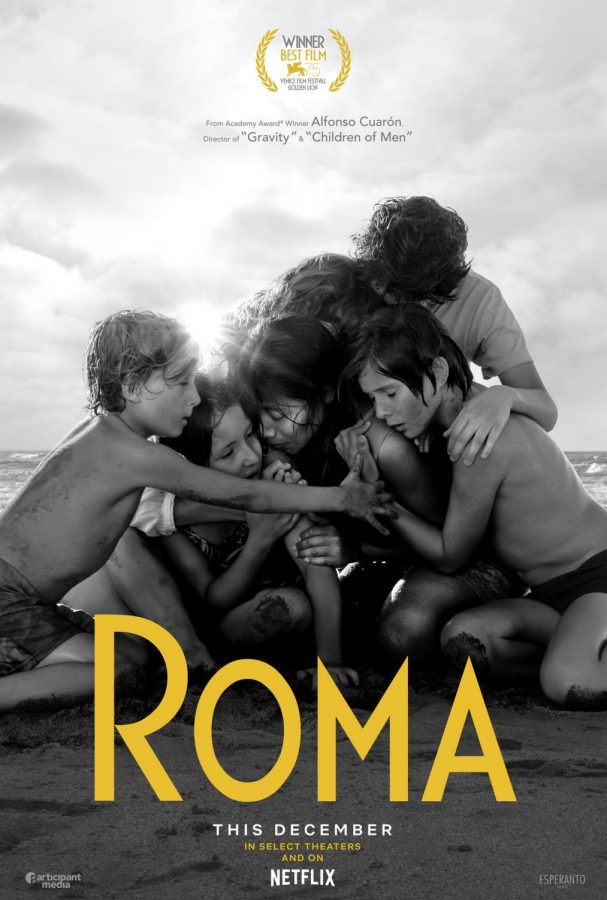 Roma: A Meticulous and Meditative Study