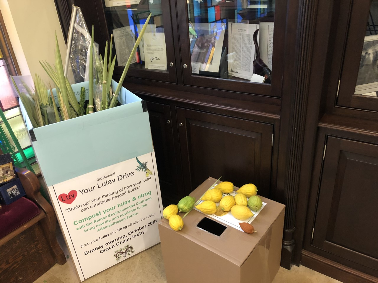 Lulav & Etrog Collection at Congregation Orach Chaim.