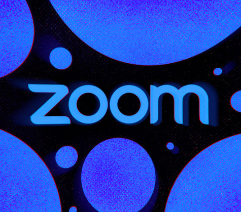 The Zoom Survey: What Did We Learn?